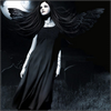 DarkNight ♥ / Mystères.. Etrangités.. Dangers.. Trois mots résumant toute une Vie.. Une Vie immortelle.. (2010)