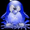 Mon pingouin ...