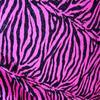 Le Tigre / Deceptacon (1999)