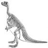 Ornithischiens