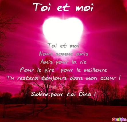 Un Poème Dina Mon Chat