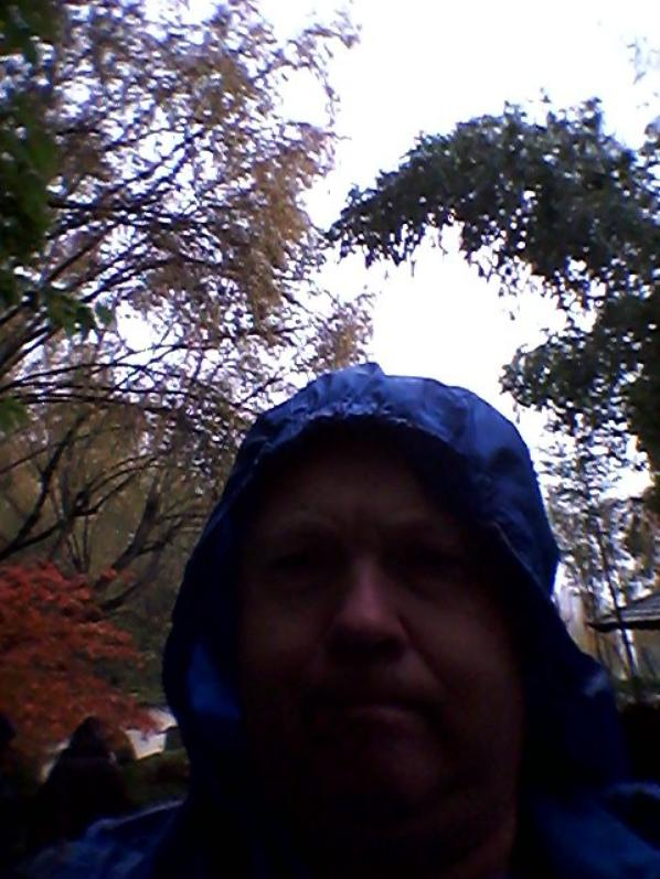 Dimanche 17 novembre 2013 ballade jardin japonais