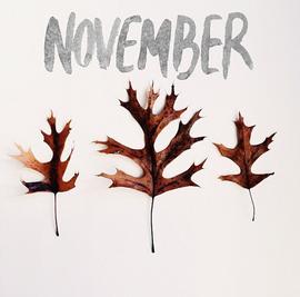 26 novembre 2018,