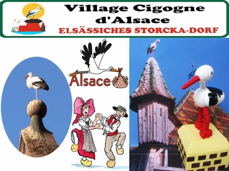 CIGNOGNES D'ALSACE