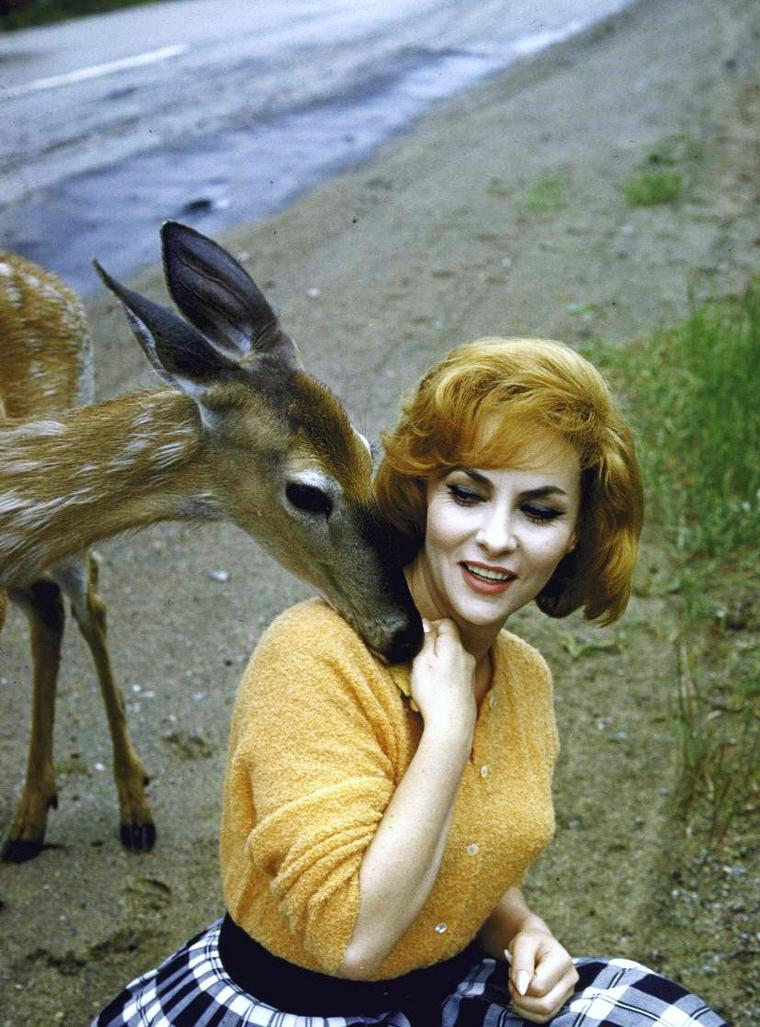 "1960 / ""La belle et la bête""... Gina LOLLOBRIGIDA by Peter STACKPOLE"