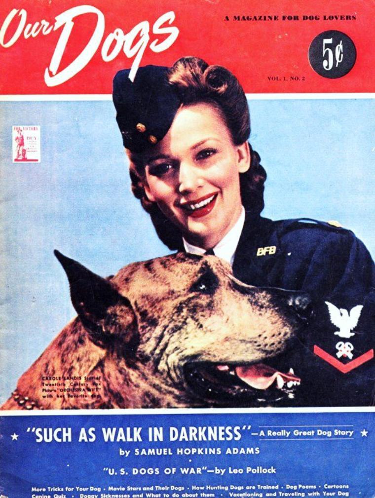 """Le chien, meilleur ami de l'homme..."" (en l'occurence de la femme) / de haut en bas / Carole LANDIS / Anita EKBERG / Jane WYMAN / Elizabeth TAYLOR / Joan CRAWFORD / Lauren BACALL / Rita HAYWORTH / Natalie WOOD"