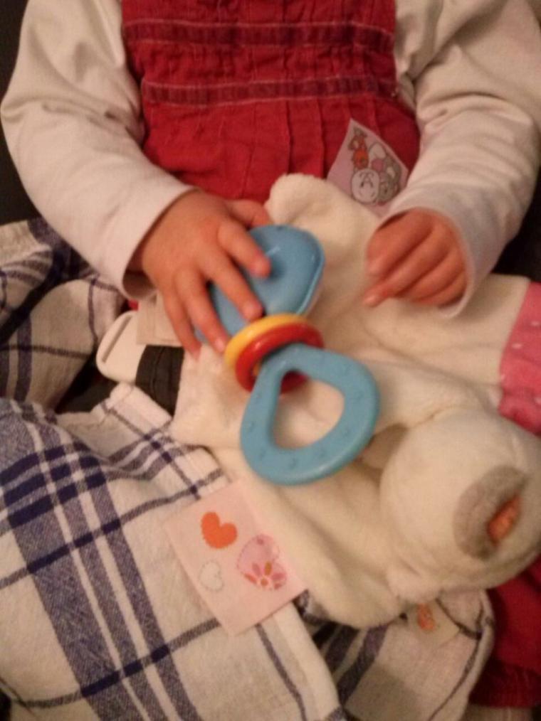 ma puce et ses jouets