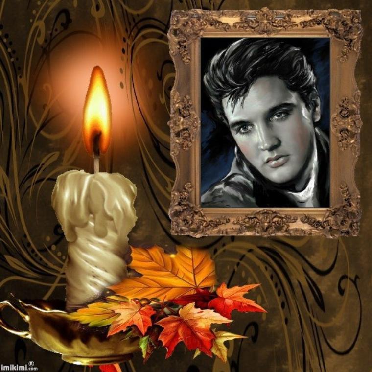 "Elvis Presley ""  L'm Your """