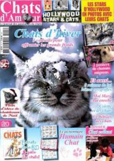 Les Chats En Magasine !!