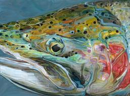 Numa Marengo, La pêche et Platon