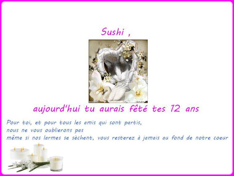 POUR SUSHI,