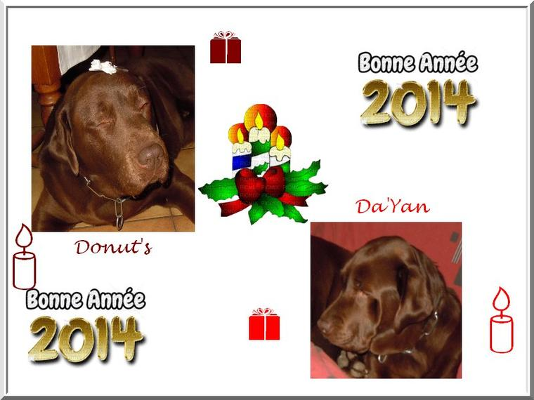 BONNE ANNEE 2014 POUR TOUS NOS AMIS . . . .