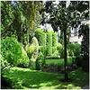 mon jardin a new york