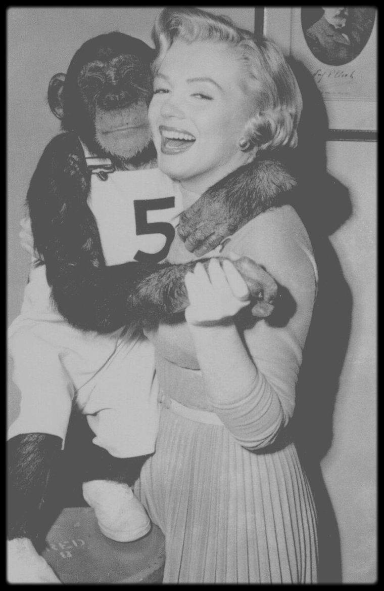 """1952 / Marilyn sur le plateau du film """"Monkey business"""" reçoit le dernier jour du tournage la visite de Joe DiMAGGIO"""