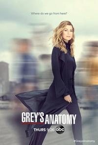Kate Walsh, de retour dans Grey's Anatomy