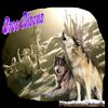 .image de loup