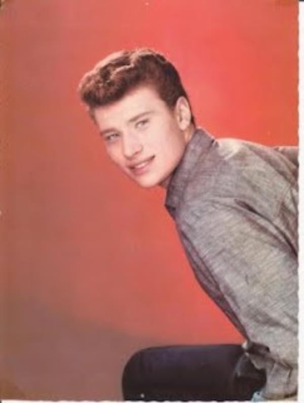 Johnny Hallyday   (8993)