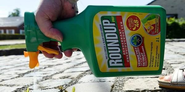 La Région bruxelloise interdit le pesticide Roundup