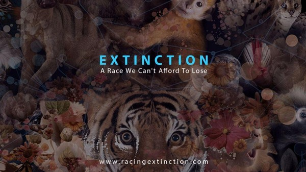 Add Your Name: Tell the World's 5 Largest Carbon Emitters It's Time to Stand Up For Species