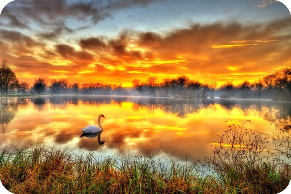 Our Life can not rewind so let's Cherish every Moment. - Daily Poetry and Stories Portal | Easy Branches