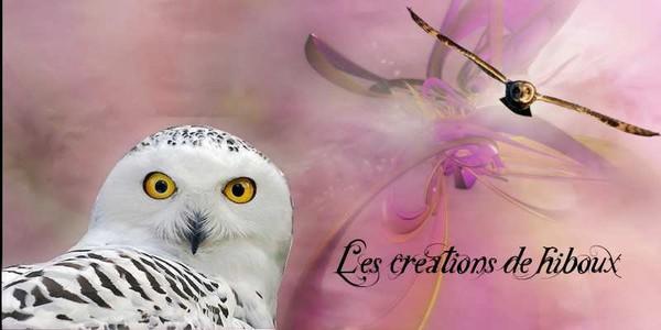 LES CREATIONS DE HIBOUX