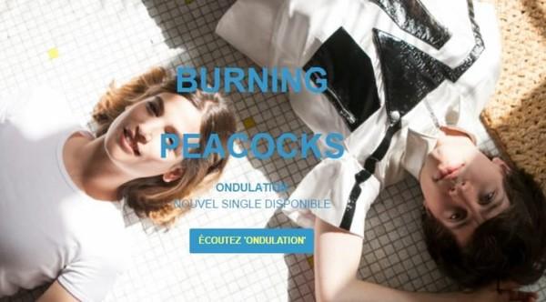 LES BURNING PEACOCKS DÉVOILENT LEUR SINGLE ONDULATION! | Muzikomag