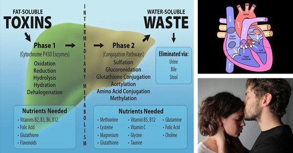 This Gene Mutation Causes Autism, Miscarriages and Heart Disease. Get These 2 Nutrients to Stop It - Healthy Food Society