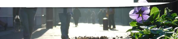 13-et-14-mars-2013- journée-wallonnes-de-l'eau-namur