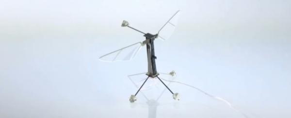 World's Smallest Flying Robot