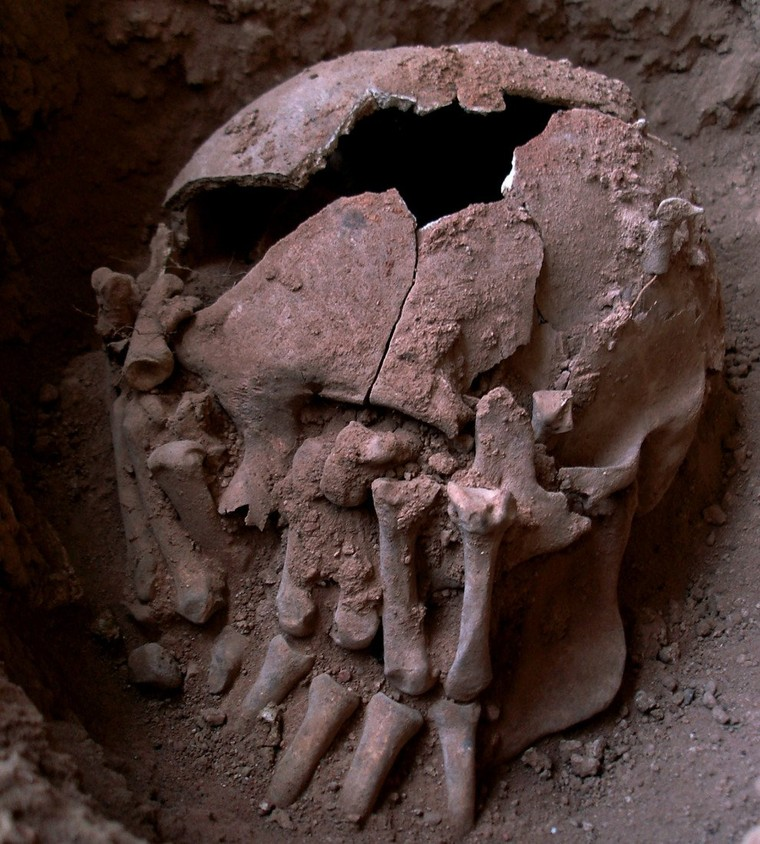 Oldest Decapitated Head in the New World