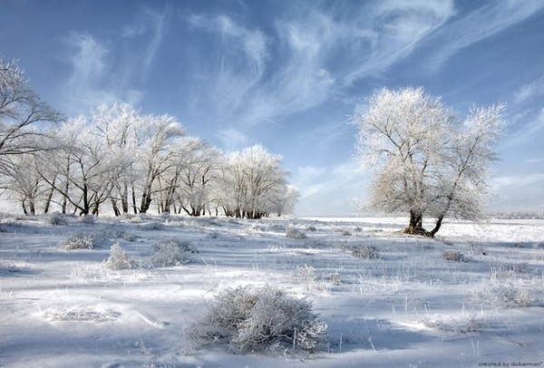 Extremely special pretty winter picture - NICE PLACE TO VISIT