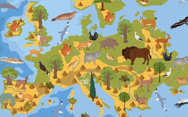 En photos : ces espèces exotiques pourraient ruiner la biodiversité européenne