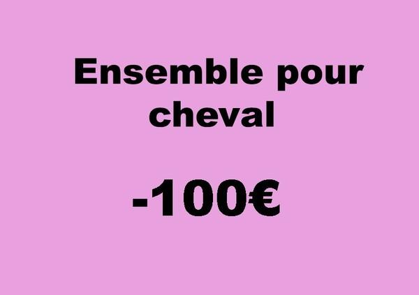 Ensembles (tapis, protections de travail + bonnet) pour cheval à MOINS de 100 €