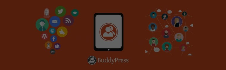 Custom BuddyPress Theme & Plugin Development Company