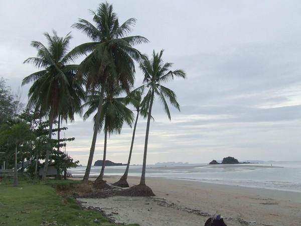 Koh Lanta (île) — Wikipédia