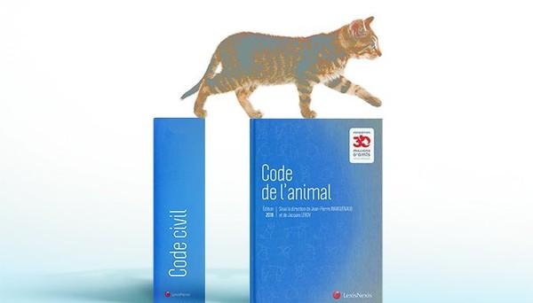 La Fondation 30 Millions d'Amis à l'origine du 1er Code de l'animal