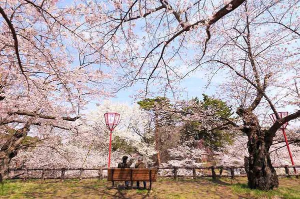 Few places do spring similar to Japan does spring