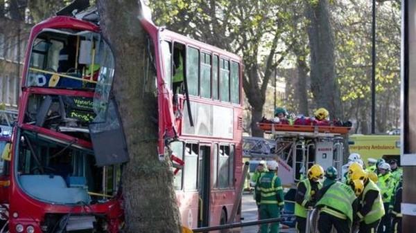 Un bus londonien s'encastre dans un arbre