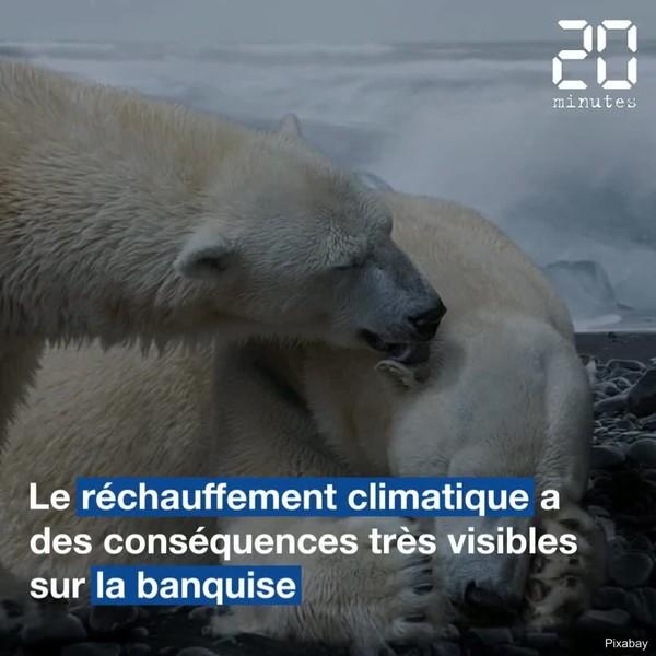 Les catastrophes climatiques se multiplient sur la planète