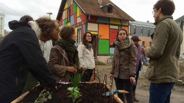 Strasbourg : 48 heures pour apprendre à jardiner - France 3 Grand Est