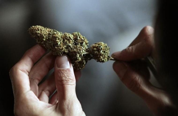 L'Uruguay vendra son cannabis légal 0,75 euro le gramme