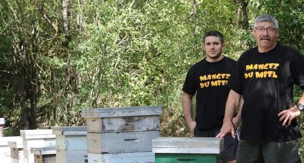 Les abeilles victimes d'une mortalité inexpliquée