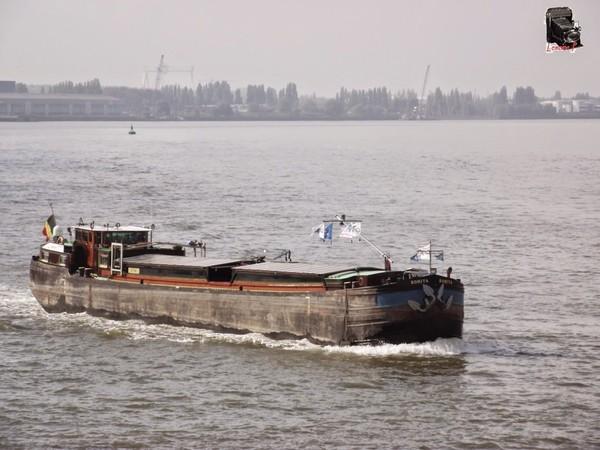 Mes parcours des voies d'eau par Pierre Lemoine: Quelques bateaux au centre d'Anvers