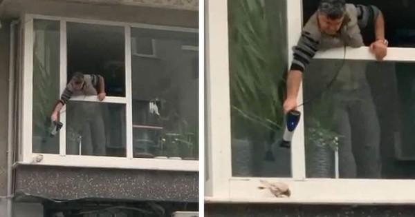 En Turquie, un homme utilise un sèche-cheveux pour réchauffer un pigeon glacé par la pluie