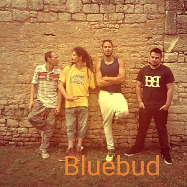 Mauvaise Graine Officiel / BlueBud