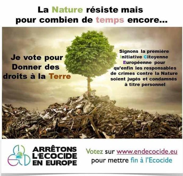 """Newsletter 19 - : Le Cacique Raoni mène un assaut historique au Congrès du Brésil / soutien à """"Arrêtons l'Ecocide en Europe"""""""