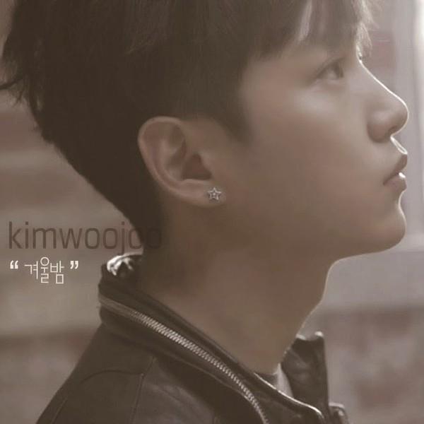 Kim Woo Joo (김우주) - 겨울밤 - HOME IPPODA