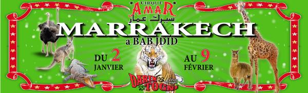 Le cirque Darix Togni est l'un des plus célèbres et anciens cirques d' Italie a Casablanca du 11 Octobre au 1 Decembre et apres en tour au Maroc
