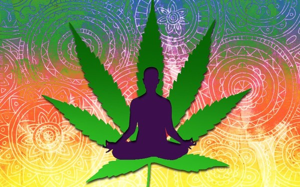 Cannabis and Yoga: A Perfect Combination?