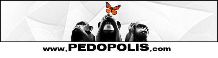 Accueil - Pedopolis